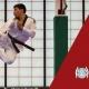 Taekwondo Franchise Sport Begeisterte